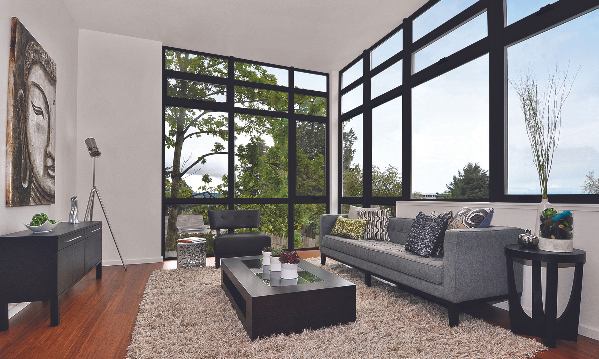 Today's Windows Doors and Skylights, Windows in home,living room